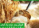 صنعت -کشاورزی