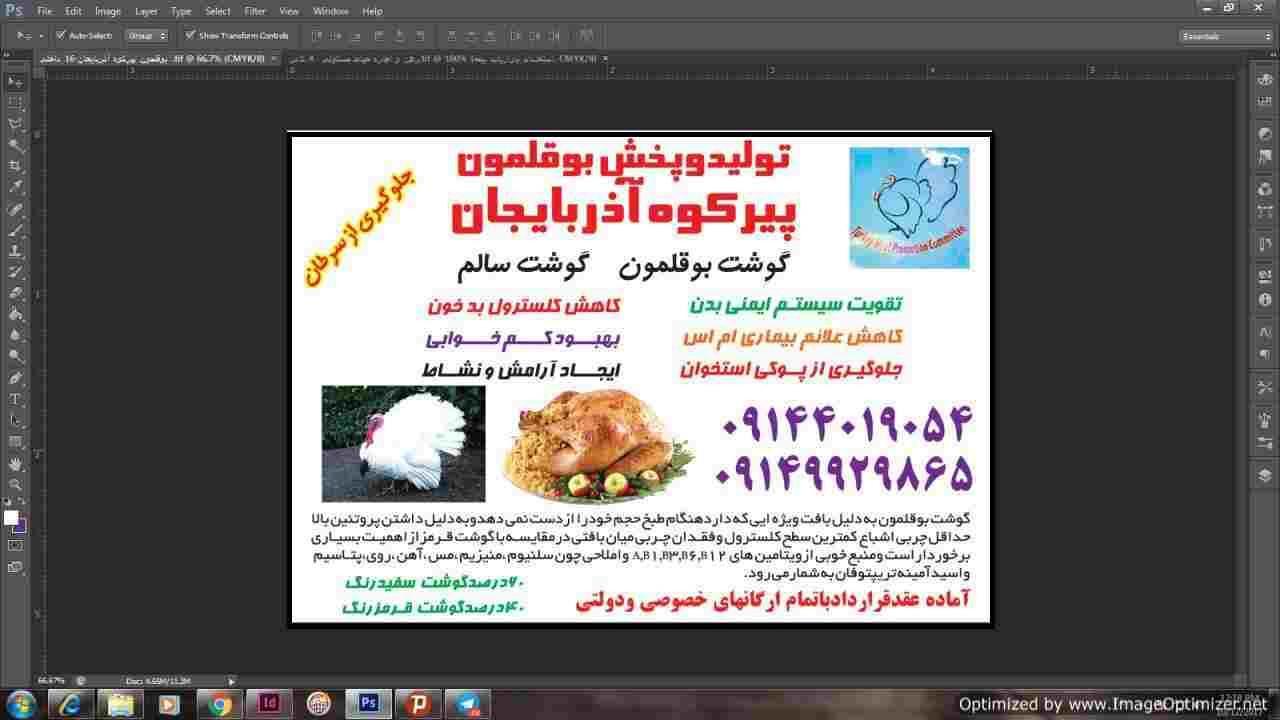 تولید و پخش بوقلمون پیرکوه آذربایجان