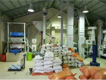 کارخانه شالیکوبی گلشنی